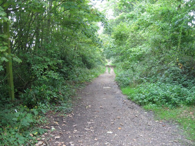 Tanhouse Lane (track)