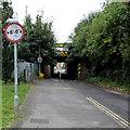 SU5290 : Narrow bridge ahead, Cow Lane, Didcot by Jaggery