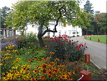 TQ3896 : The White House, Gilwell Park by Marathon