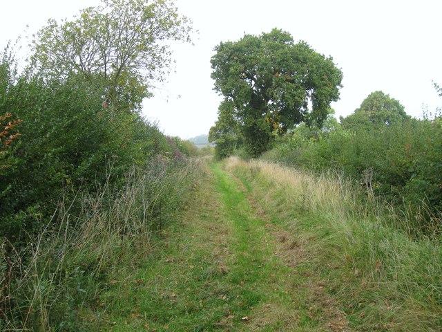 Green Lane (track)