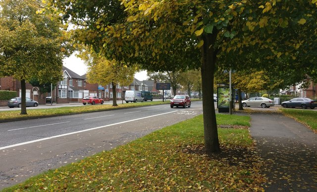 Autumn colours along Narborough Road South