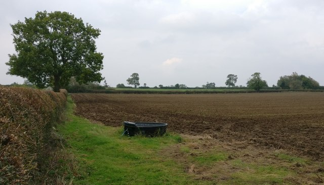 Farmland next to Willoughby Road
