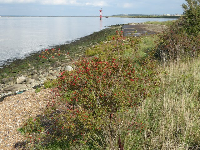 The Saxon Shore Way by Shornmead Fort