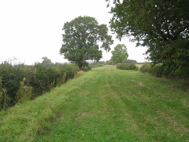 Getton's Lane (track)