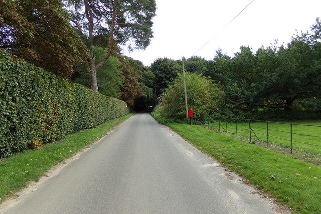 Narford Lane. South Acre