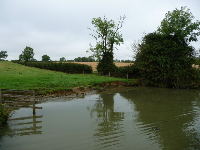 Canal bank broken down by cattle drinking