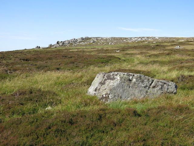 Monk's Moor