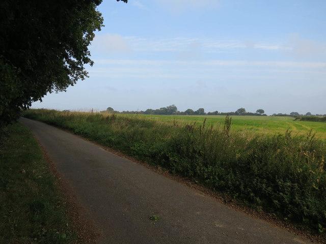 Bacton Road by Verona Plantation