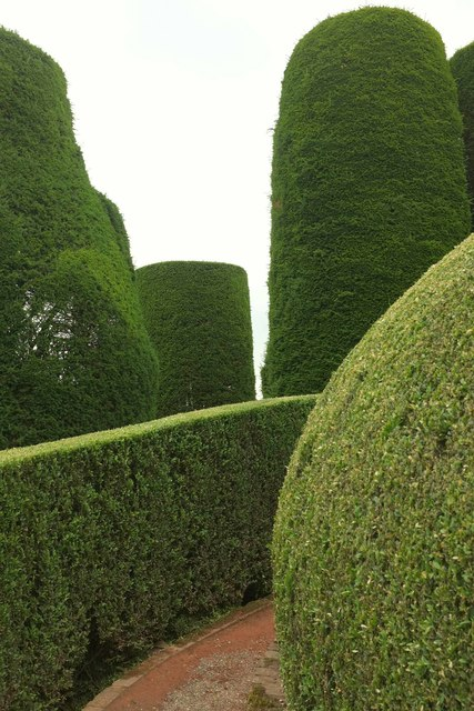 Yews, Packwood House