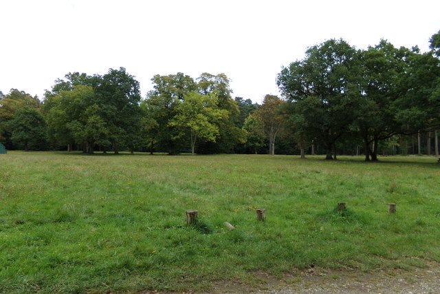 Lyndford Stag Picnic Site