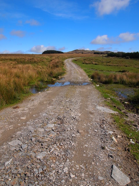 Track Across Roughtor Moors