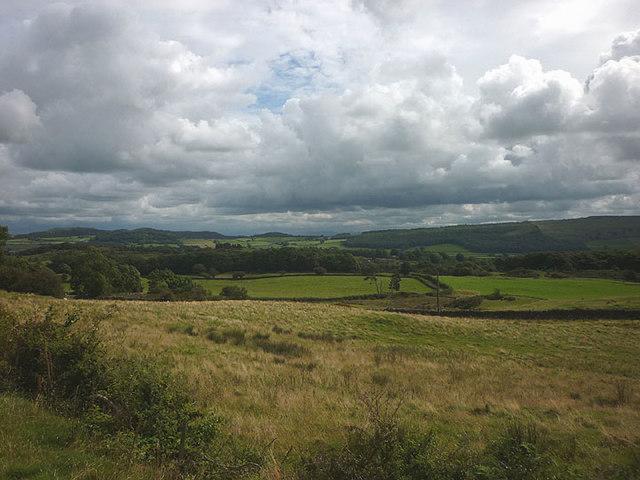 Rough pasture near Over Ridge