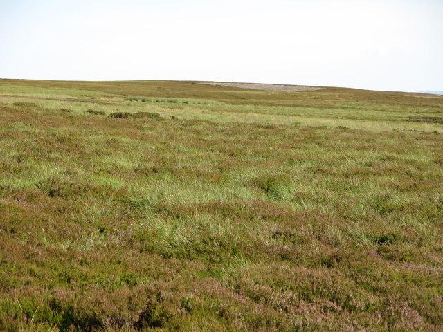 Monk's Moor above Raven Hills