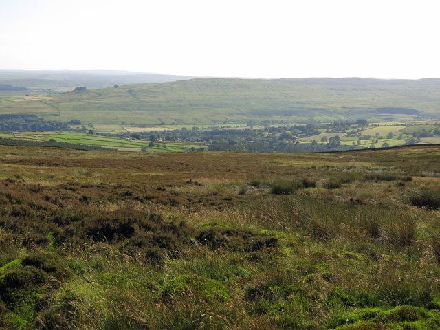 Moorland above Brown Dodd