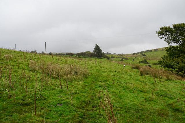 Footpath towards Tomen-y-mûr