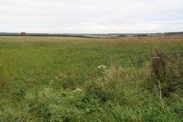 Path on corner of Hendale Wood