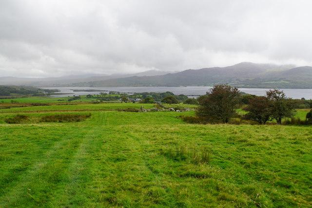 Track towards Llyn Trawsfynydd