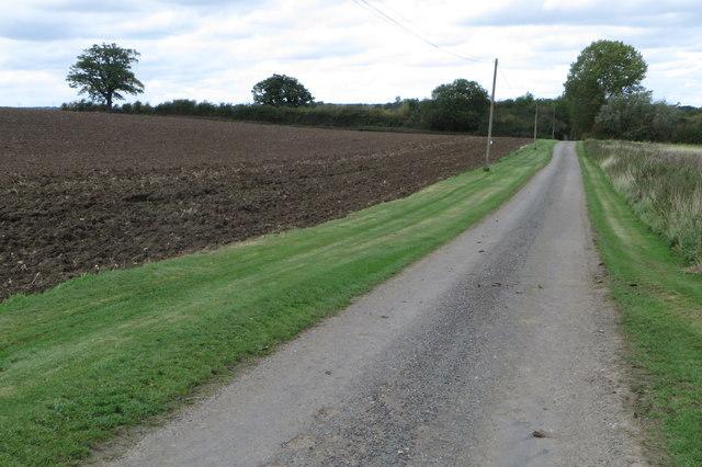 Lane from Newton Park towards the sewage farm