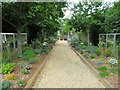 SZ3489 : Garden path at Norton Grange by Steve Daniels