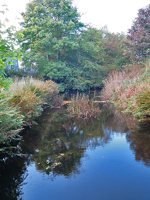 Port Elphinstone Canal