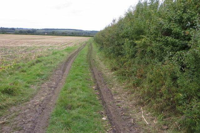 Bridleway towards Snelson