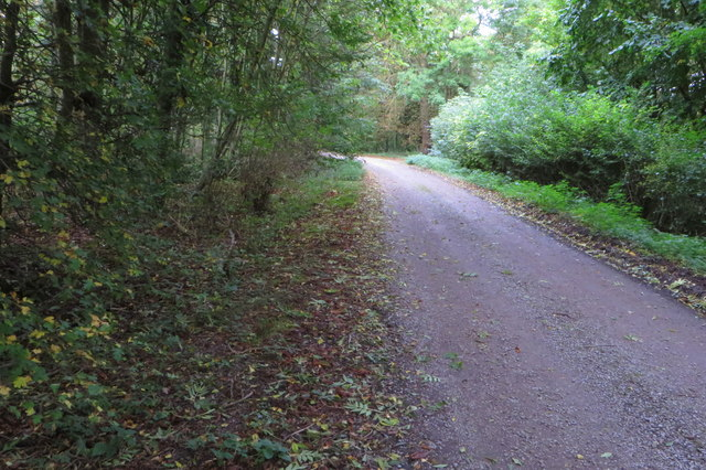 Bridleway to Pictshill Farm