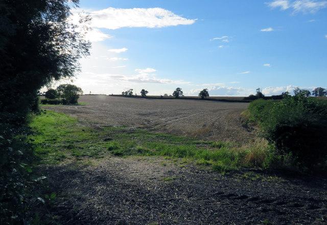 Fields west of Gaddesby Lane