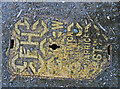 SK7017 : Fire Hydrant cover by Andrew Tatlow