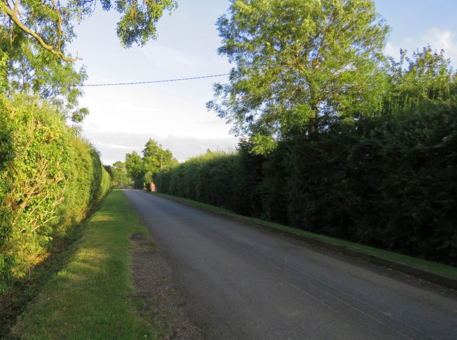 Gaddesby Lane towards Gaddesby