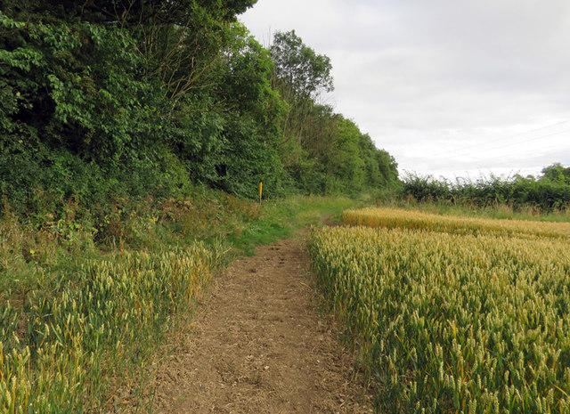 Footpath alongside Ashby Pastures