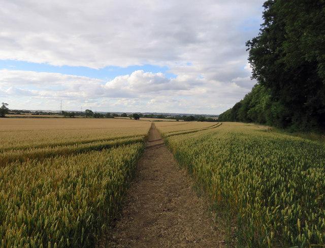 Footpath towards Kirby Bellars