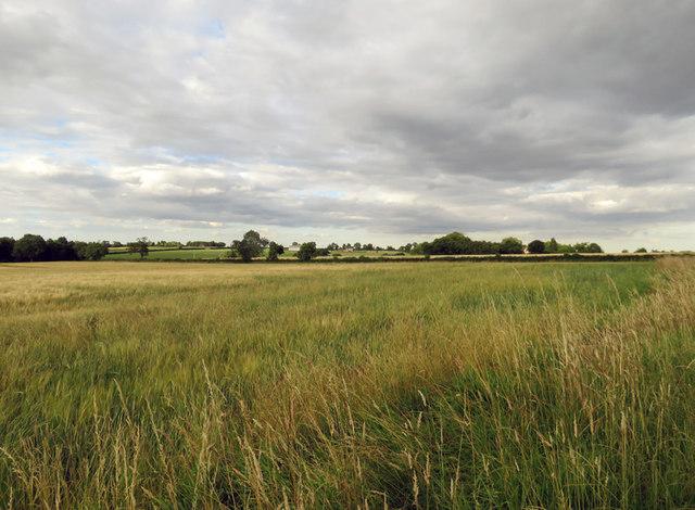 Towards Pastures View Farm