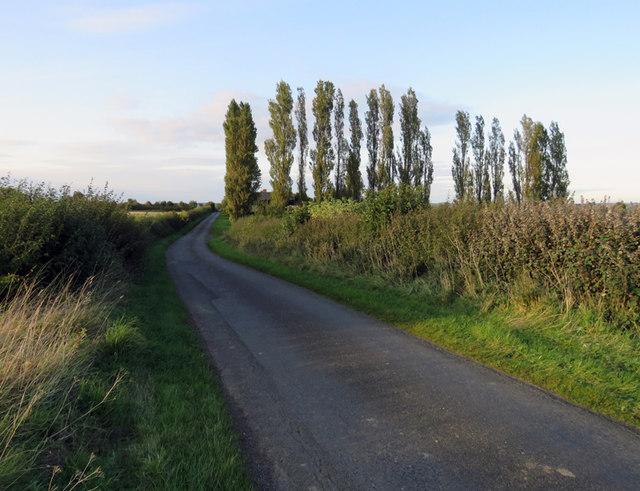 Thorpe Satchville Road northwards