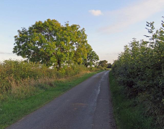 Thorpe Satchville Road southwards