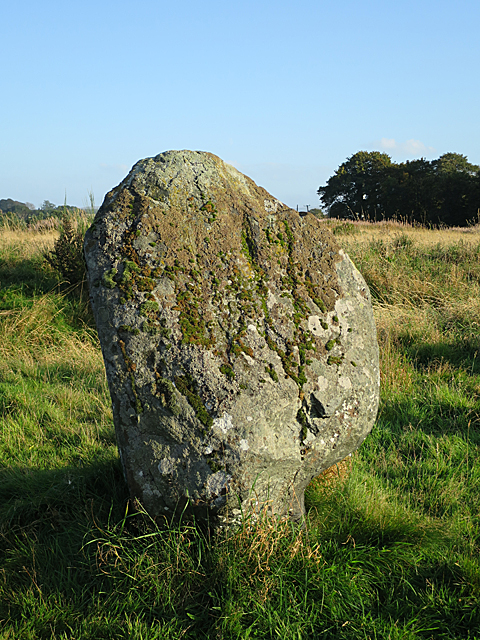 Broomend of Crichie Stone Circle (5)