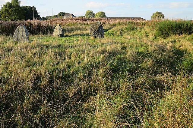 Broomend of Crichie Stone Circle (7)