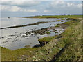TQ6974 : View from the Saxon Shore Way near Shornmead Fort by Marathon