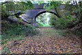 SP9752 : Bridge over the dismantled railway by Philip Jeffrey