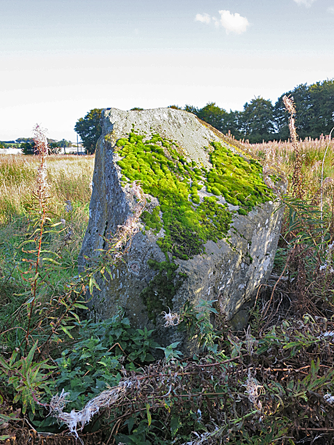 Broomend of Crichie Stone Circle (9)