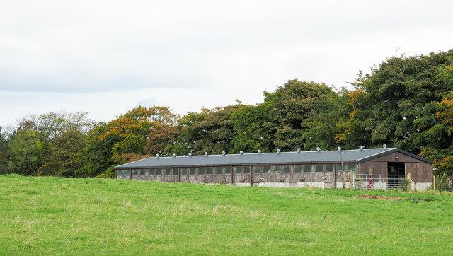 Building at Pontop Farm