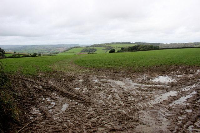 Muddy Field Entrance on Lidyates Lane