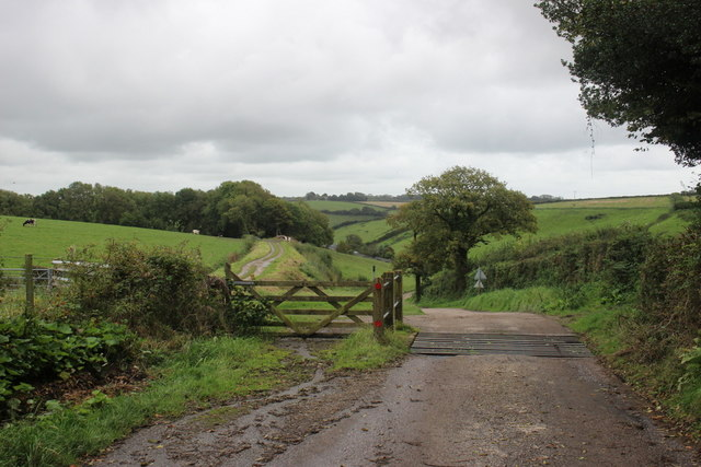 Cattle Grid on Lane to Shapwick