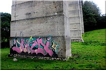 SY3192 : Street Art on Cannington Viaduct by Nigel Mykura