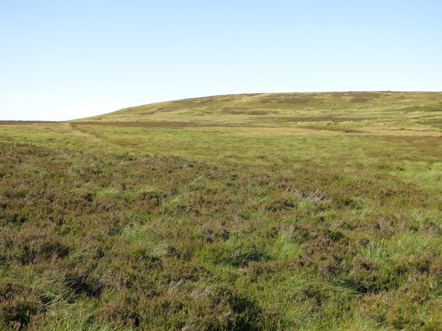 The southwestern part of Monk's Moor