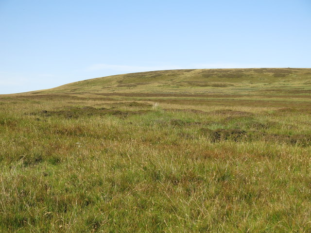 The southwestern part of Monk's Moor (2)