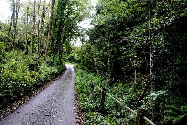 Road Through Yawl Bottom