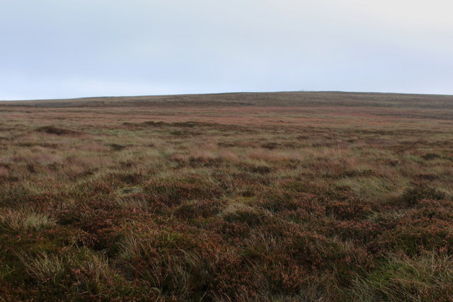 Moorland South of Whitaside Tarn