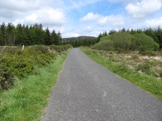 The Annaloughan Forest boundary reaching the Piedmont-Upper Jenkinstown road