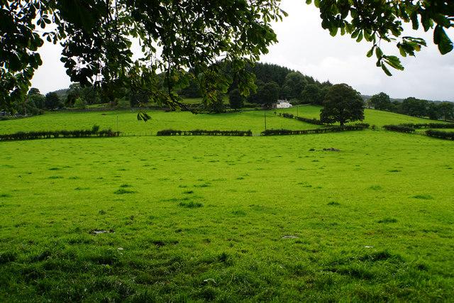 Fields below Ty'n-y-frîdd
