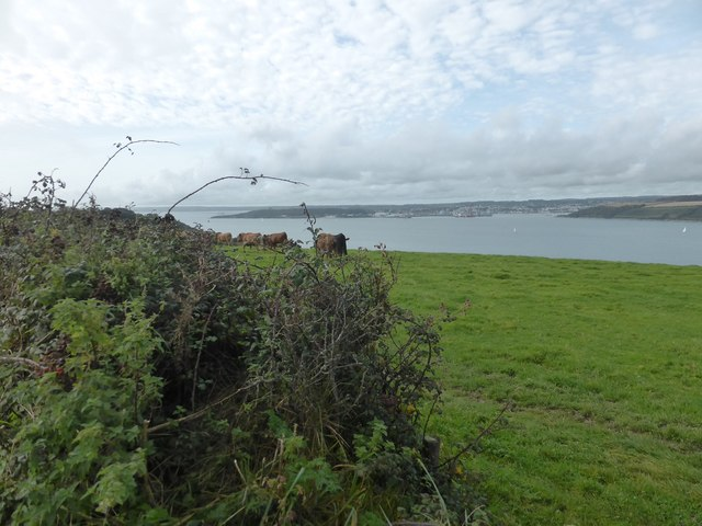 Looking towards Falmouth from fields next to the A3078